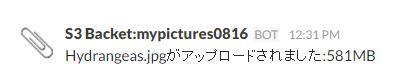 UploadNotification.jpg