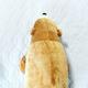 hukkahuka
