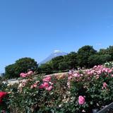 t_aisu_ke