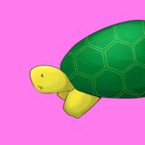 Turtlesk