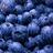 bluegoldme