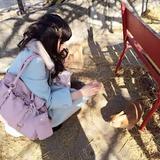 np_misaki