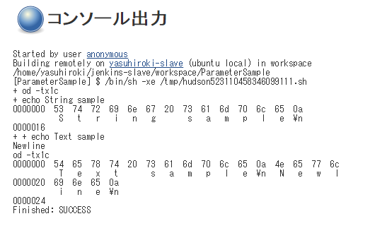Jenkins-Parameter-String-Text-Input-Exm-Result2.png