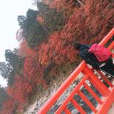 HirosuguTakeshita
