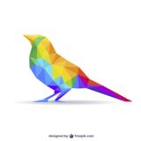 params_bird