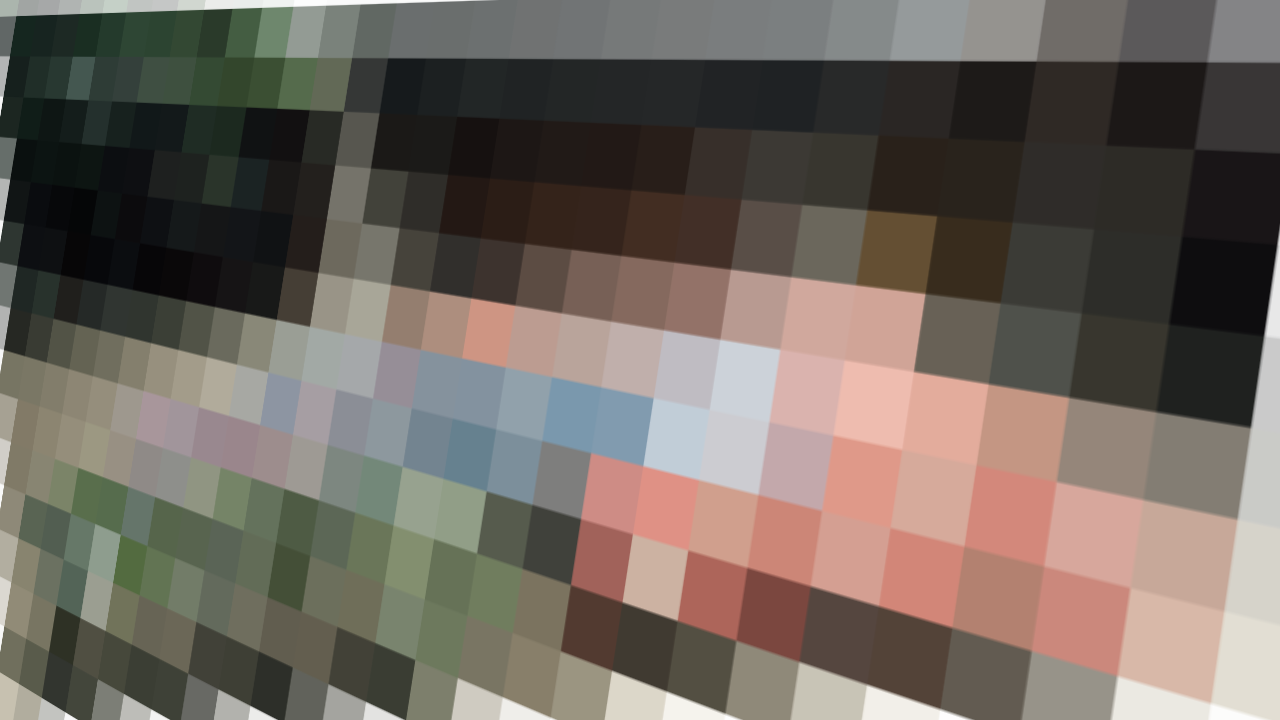 perspective_mosaic.png