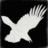 White_Raven777